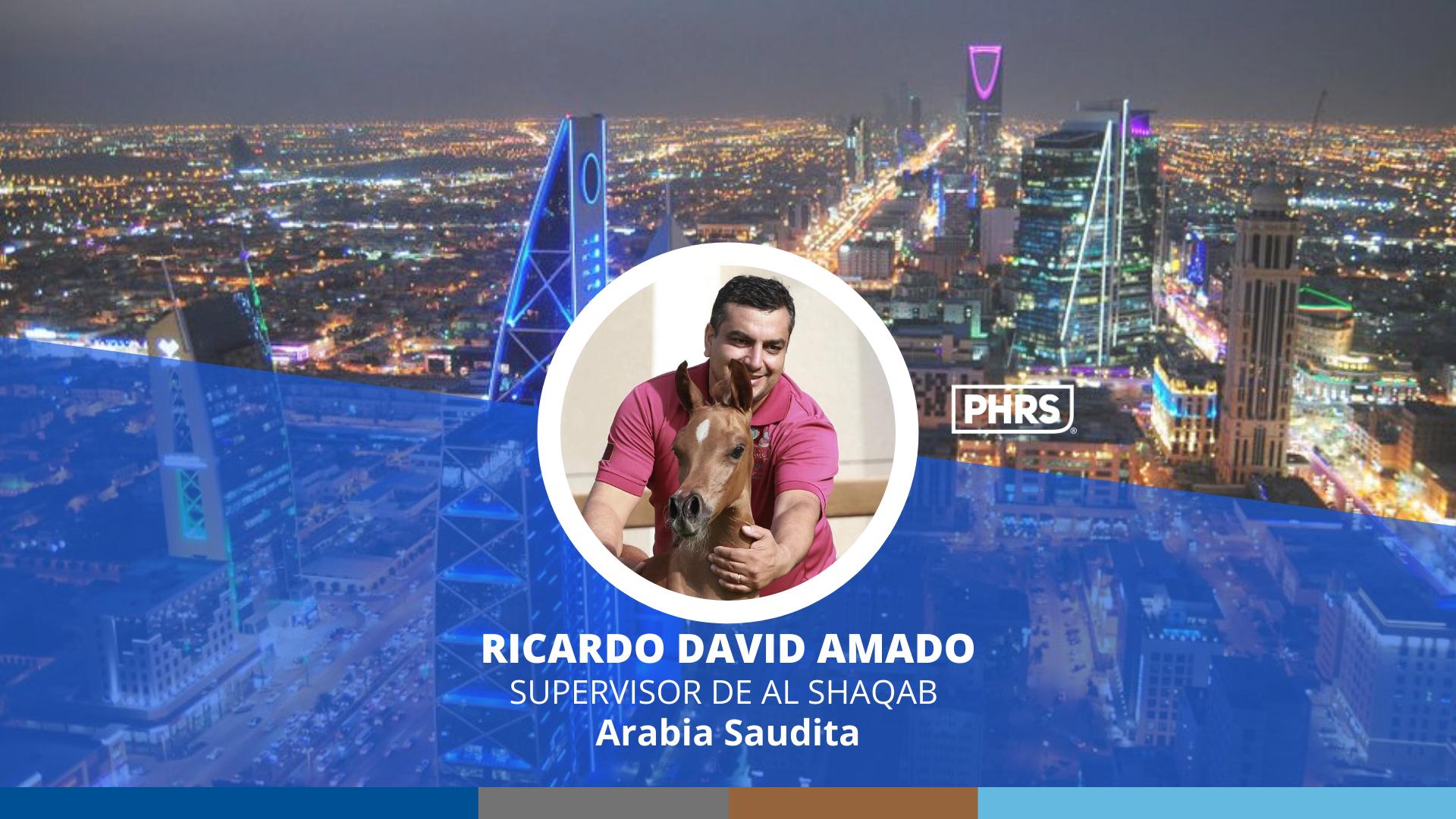 Experiences | Ricardo David Amado